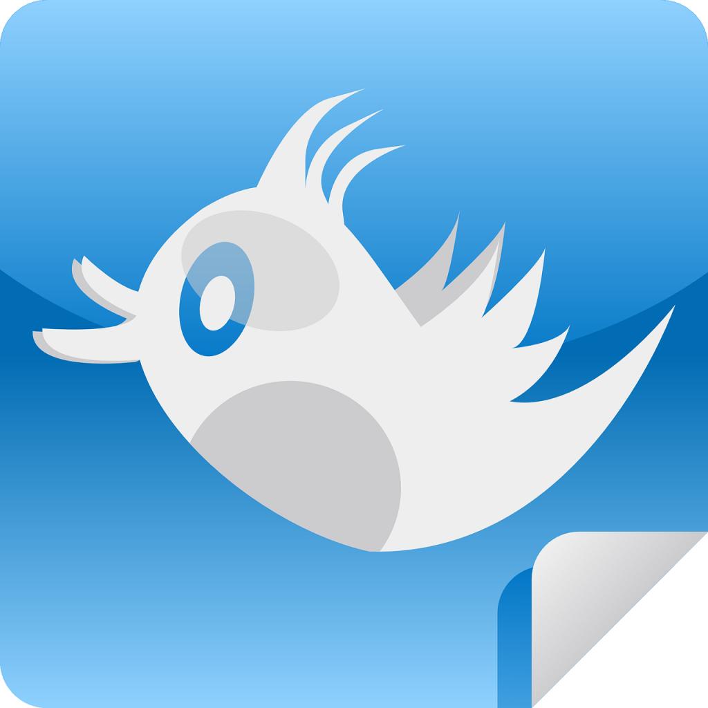 Haiti, Twitter, social media